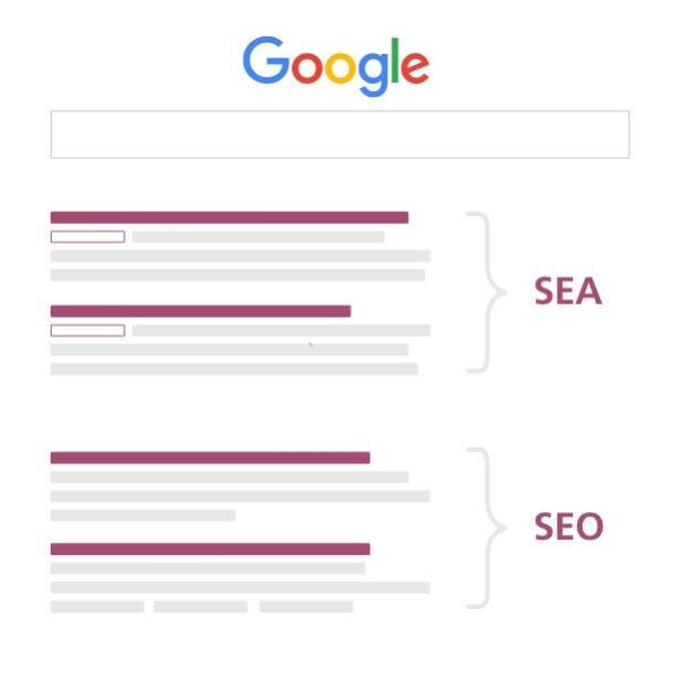 SERP's: SEA und SEO